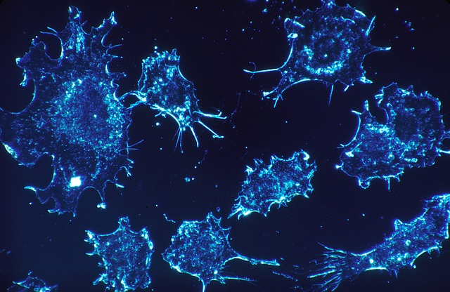 mutacja rna a nowotwory