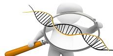 Czy badania dna są drogie, Kto najczęściej wykonuje badania dna, Kiedy zdecydować się na badanie dna, Czy można oszukać badanie dna
